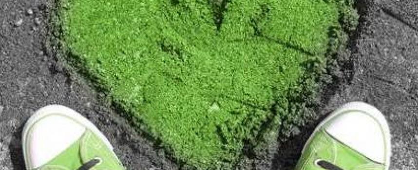 Зелёный цвет