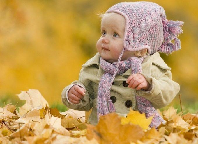 Первая неделя Осени — поймать послание Мира