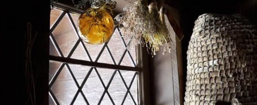 Ведьмины шарики