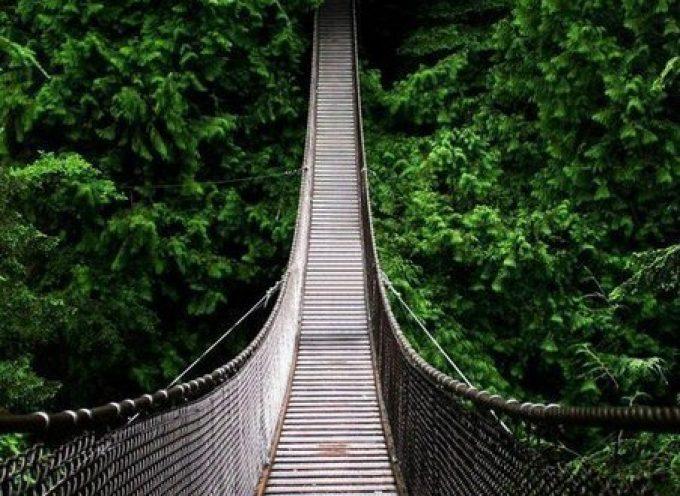 Первая неделя июля – мост к новому!