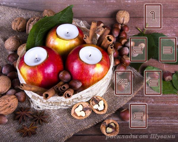Расклад на Мабон «Плоды осени» Apples