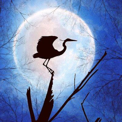 Ещё о лунном затмении — от Светлодары