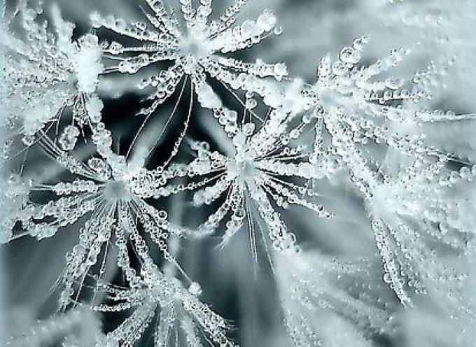 22 ноября – новолуние в Стрельце. Время, когда маленькие радости вырастают в большое счастье