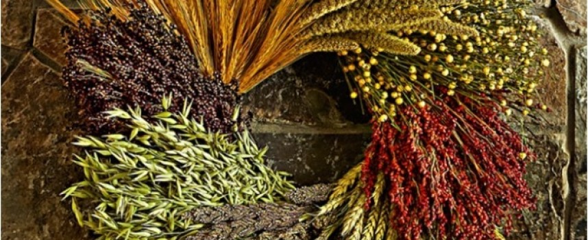 Уважаемые участники Волшебного ритуала урожая на Ламмас!