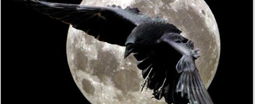 Луна без курса май 2016