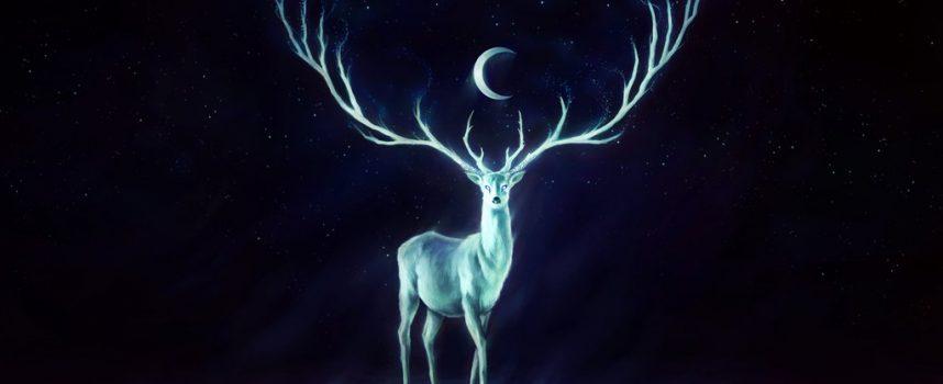 Время путеводной звезды: прогноз на неделю с 27 июня по 3 июля