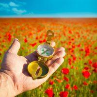 Цели и ценности: солнечное затмение 1 сентября
