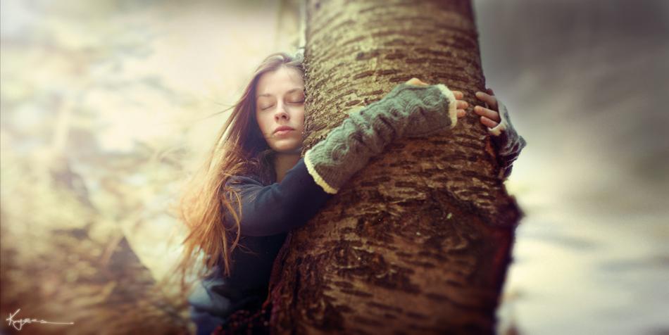 Какие деревья забирают энергию человека деревья-вампиры