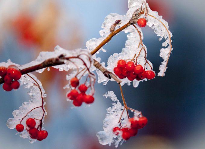 Энергетические заморозки: прогноз на выходные 24-26 марта