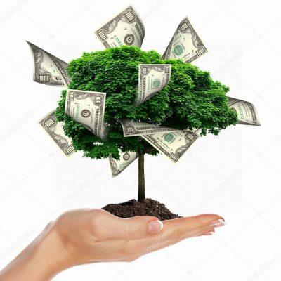 Новолуние в Тельце: выращиваем денежное дерево