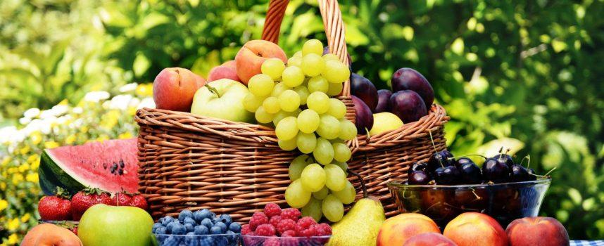 Праздник урожая: прогноз на выходные 30 июня — 2 июля