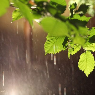 Дождевая магия