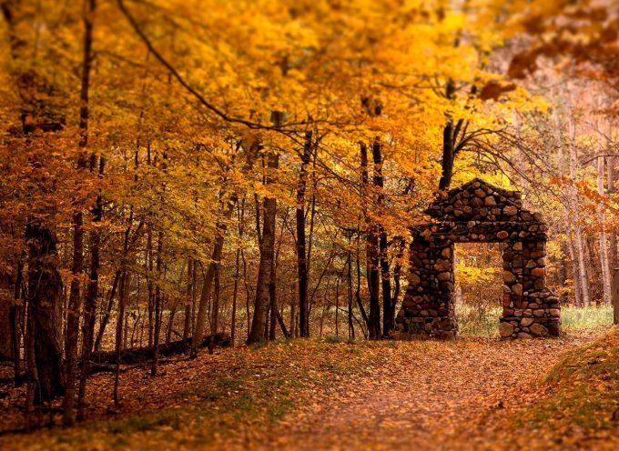 Самайн — Дорога и Врата: прогноз на неделю с 30 октября по 5 ноября