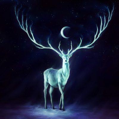 Лунная история от Шувани на месяц 18 декабря — 17 января