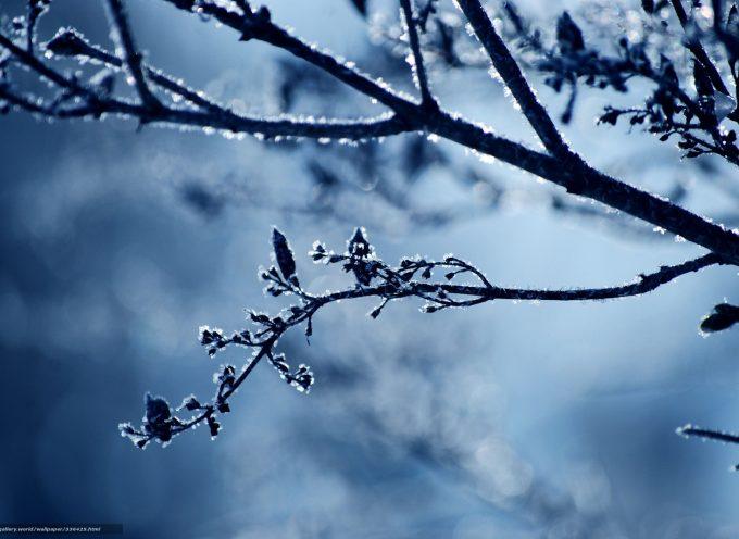 Время тишины: прогноз на 8 февраля