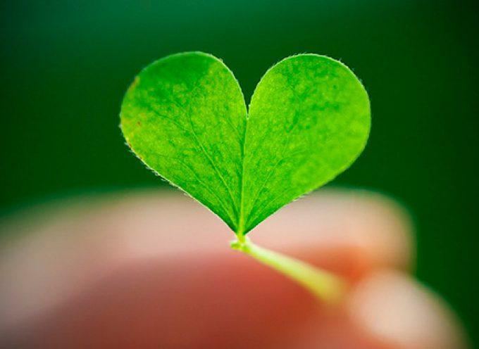 Время сердечности и надежды: прогноз на среду 4 апреля