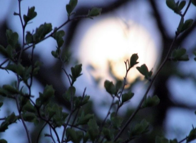 Луна без курса апрель 2018