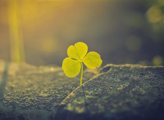 Время гармоничного роста: прогноз на 20 апреля