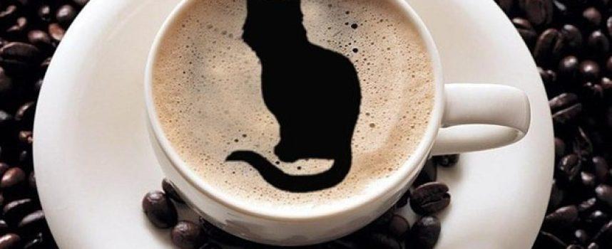 Кофе ведьм