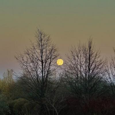 Луна без курса ноябрь 2018