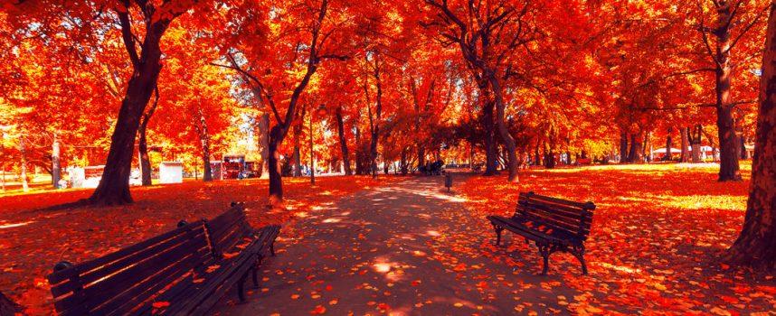 Трудный день: прогноз на 18 октября