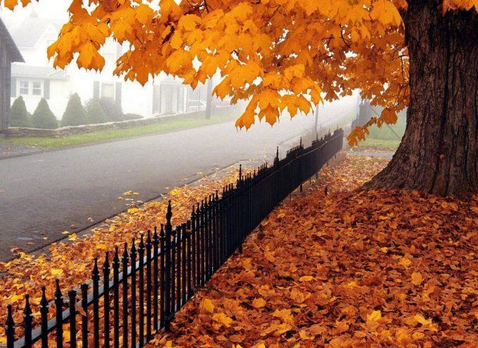 Не Судьба: прогноз на 19 октября