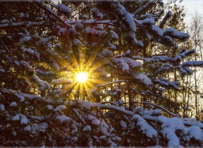 Луч света: прогноз на 27 ноября