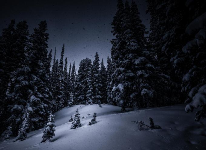 Самое тёмное время: прогноз на 20 декабря