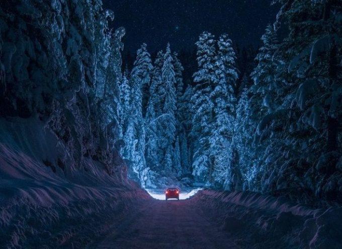 Путь по зимнему лесу: прогноз на 12 декабря