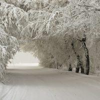 Движение сквозь Коридор: прогноз на неделю 14-20 января
