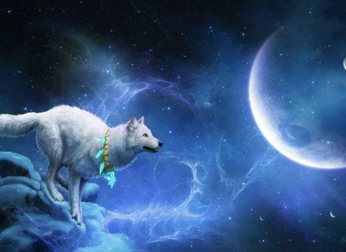 Луна Волка — выход из Коридора затмений: прогноз на неделю 21-27 января