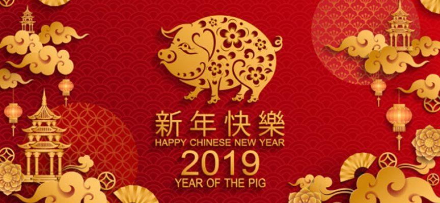 Гадание «Что вам готовит год Свиньи?»