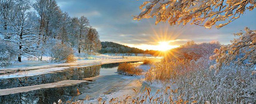 Солнечный луч: прогноз на 4 декабря