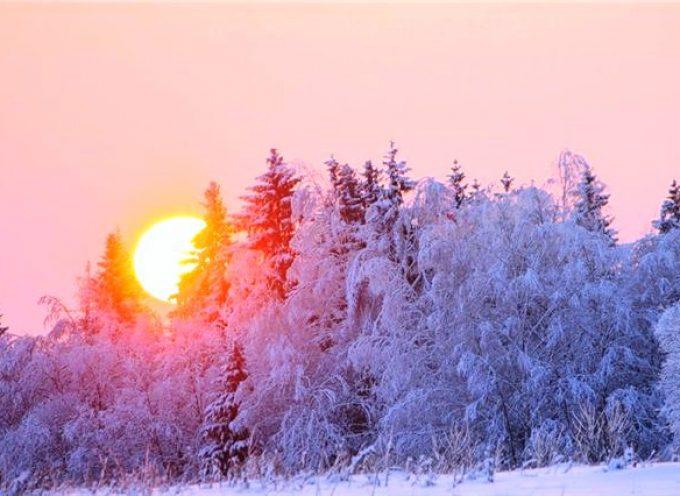 Встречаем Солнце: прогноз на 15 января