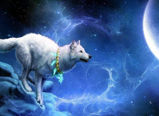 Луна Волка: прогноз на 10 января
